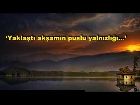 Ayşegül Aldinç feat. Eflatun - Seni Sevmek Var Ya