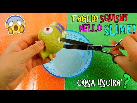 TAGLIO SQUISHY E LI METTO NELLO SLIME! COSA USCIRA'? Iolanda Sweets