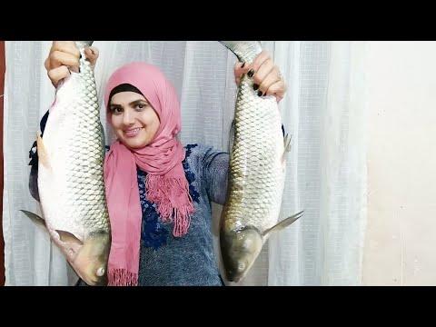 الفسيخ الأسواني الاصلي من/ سمكة الحشيش/سمك حشائش