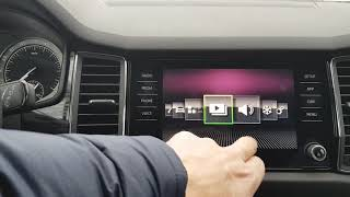 Skoda Kodiaq Driving Mode selection и букс на DSG