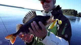 Рыбалка со спиннингом в архангельской области
