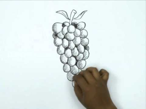 How to Draw a Cartoon Grapes - YouTube