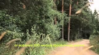 видео Няня на даче