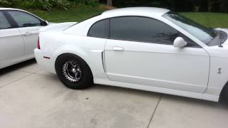 2004 ford mustang cobra walk around video