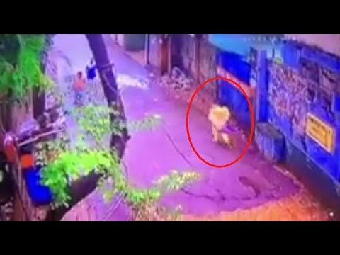 Child Theft in Chittagong | মায়ের কোল থেকে শিশু নিয়ে গেল চোর