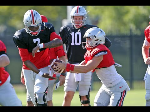 Could Tate Martell succeed if OSU needed him to start?