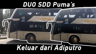 Video double decker bus release from adiputro | Duo Putera Mulya SDD download MP3, 3GP, MP4, WEBM, AVI, FLV September 2017