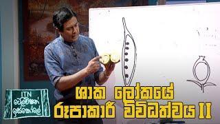 ITN Television Iskole - (2020-06-22) | ITN Thumbnail