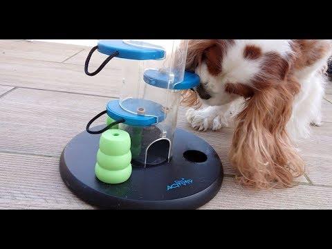 Dahlia a testé le Dog Activity Gambling Tower de chez Trixie