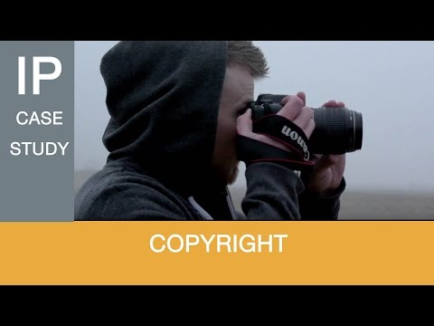CASE STUDY: How do I protect my copyright as an artist or photographer?