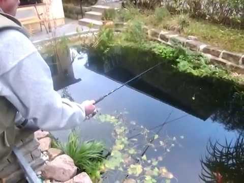 Regenbogenforelle angeln im teich youtube for Youtube gartenteich anlegen