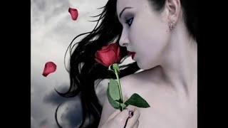 Waheed Qasimi - Mesha Dar Baghe Do ChashMayet Beshenom