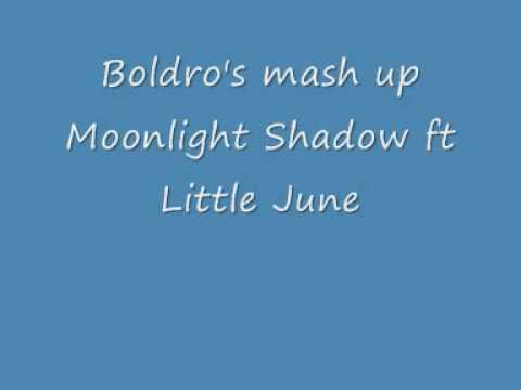 Boldro's mash up - Moonlight Shadow feat Little June