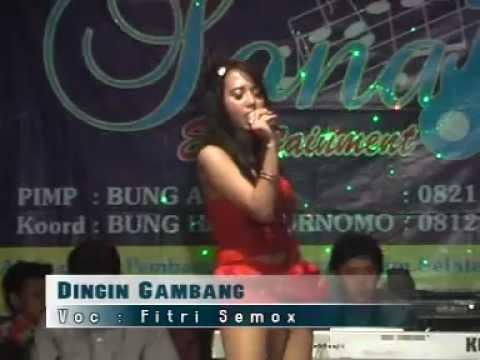 05 DINGIN GAMBANG