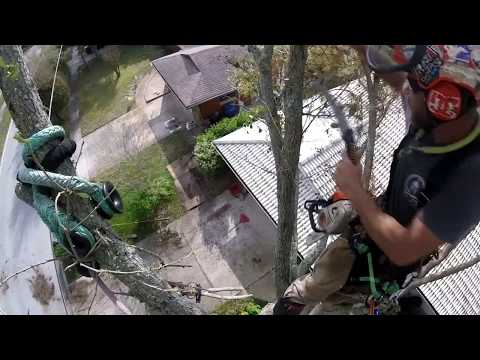 ( RAW ) removing leads over house. x-rigging , span rigging . half live oak removal