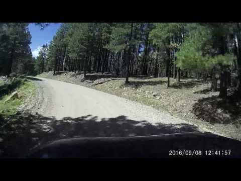 East Pocket Road Highlights, Coconino National Forest, Arizona