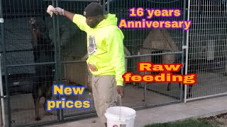 16 year anniversay/ price changes/ raw feeding  and special surprise 8436703346