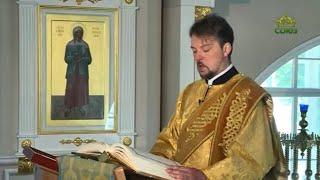 Читаем Евангелие вместе с Церковью 7 июля. Евангелие от Луки. Глава 1, ст. 1-25, 57-68, 76, 80.