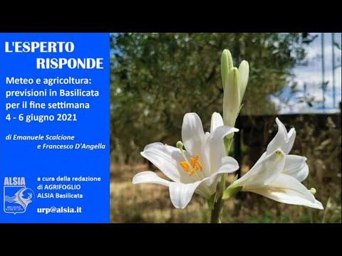 Basilicata, anche per il 4 - 6 giugno condizioni f...