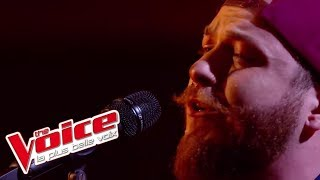 Marguerite - Richard Cocciante | Nicola Cavallaro | The Voice France 2017 | Live