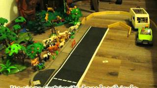 visite parc animalier playmobil.mp4