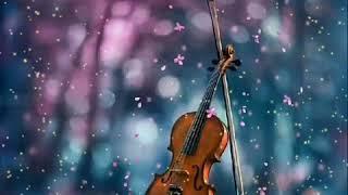 kanneer poovinte kavilil thalodi | Malayalam sad song| violin | Malayalam WhatsApp status | music