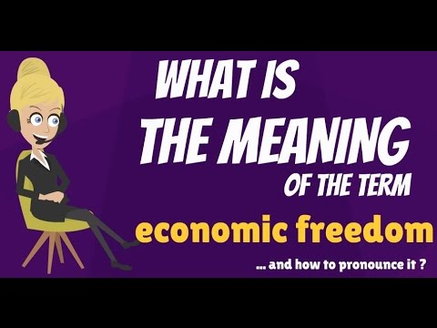 What is ECONOMIC FREEDOM? What does ECONOMIC FREEDOM mean? ECONOMIC FREEDOM meaning