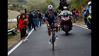 Julian Alaphilippe - Top 10