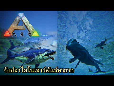 จับปลาไดโนเสาร์พันธ์หายาก #23