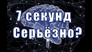 мозг выбирает за нас. Как работает мозг. Тринити Тан