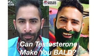 Can Testosterone Make You Bald? [Part 4]