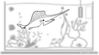 Sail Fish - How to draw Sailfish