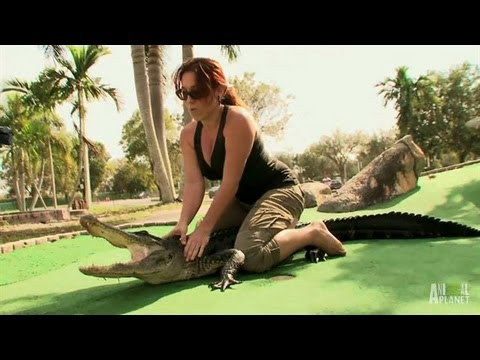 Gators and Mini Golf Don't Mix | Gator Boys