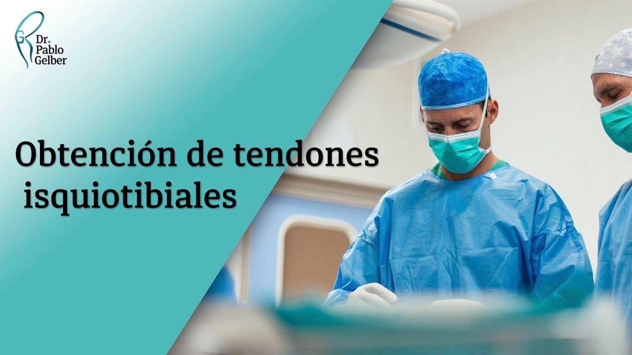 Obtención de tendones isquiotibiales - YouTube