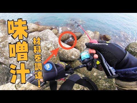 【北海道釣り旅】この穴から味噌汁の材料を調達する!【穴釣り】#23