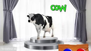 Cows colour learning with kids ..funny baby