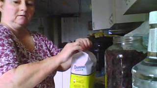 Making Blackberry Brandy.wmv