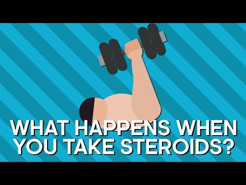 What Happens When You Take Steroids?   Earth Lab