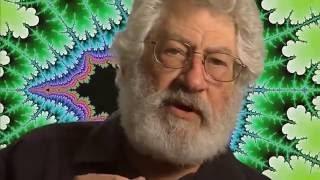 фракталы. Поиски новых размерностей  Fractals - Hunting the Hidden Dimension NOVA 2008