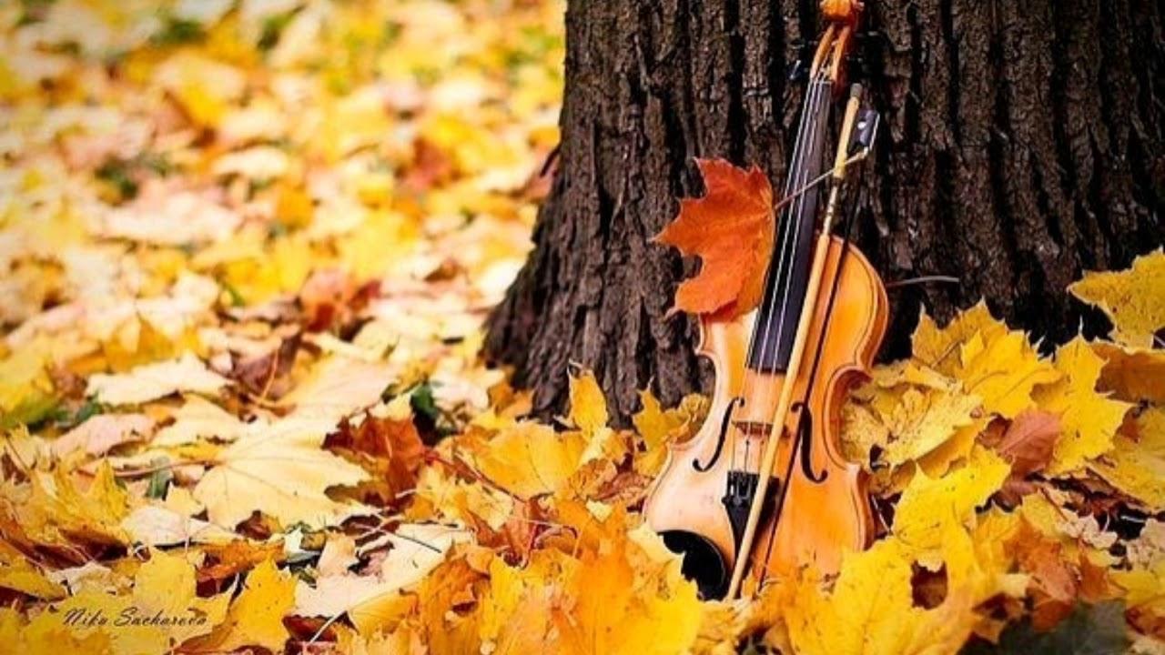 Осень в карелии фото которая