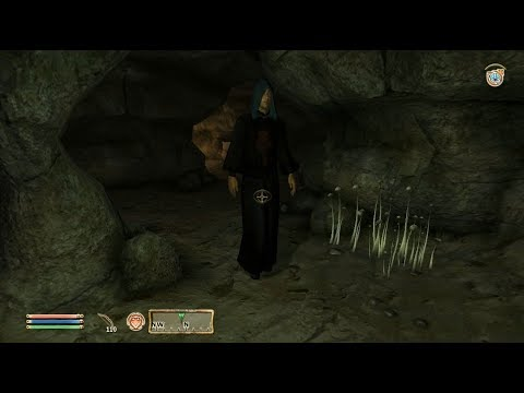 TES IV Oblivion #125 Дела колдуна