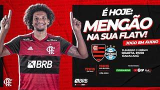 Flamengo x Grêmio - Brasileirão 2020 Ao Vivo
