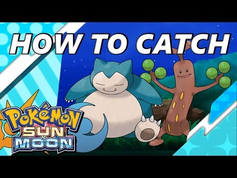 how to catch volocanion in pokemon moon
