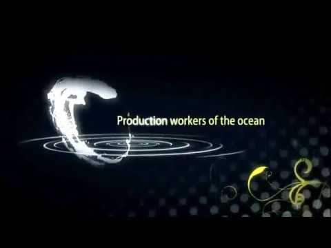 Production workers of the ocean