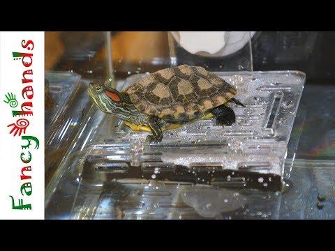 Новый удобный остров для черепахи