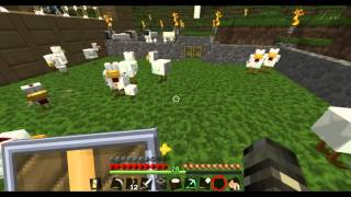 Chicken Sex.. In Minecraft?