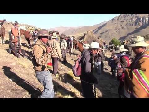 Gran Corrida de Toros Huaquirca 18 de Agosto 2015 ( Familia: Roman Peña)