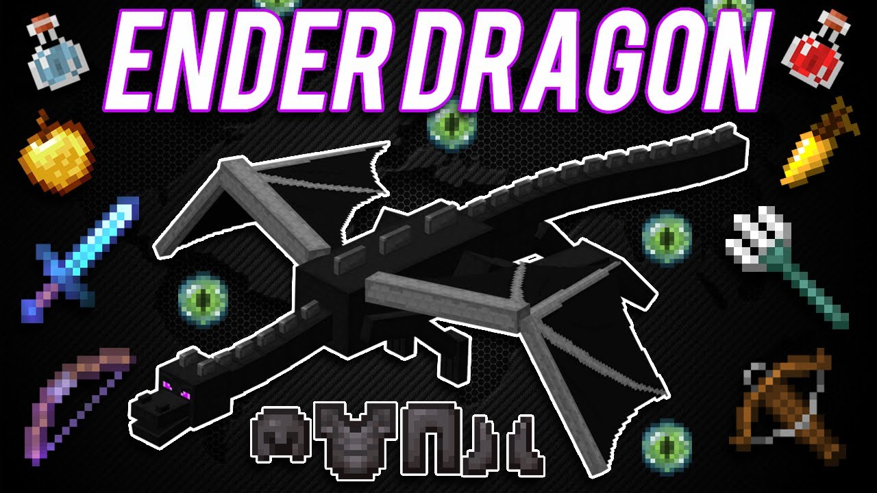 """MINECRAFT - How To Beat THE ENDER DRAGON?!? ALL THINGS TO BEAT THE ENDER DRAGON! """"How To Tuesdays"""""""