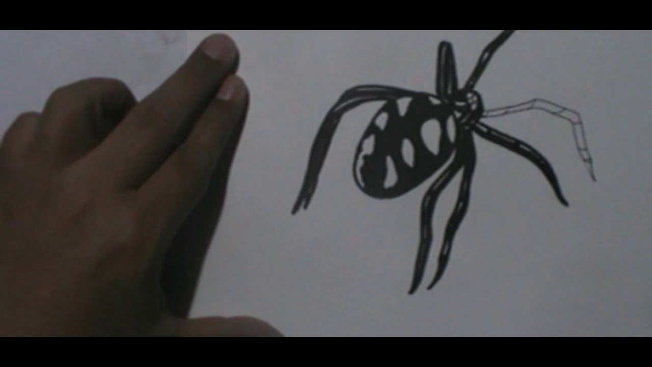 ARAÑA   VIUDA NEGRA   DIBUJO A TiNTA Y COLOR   SPEED DRAW