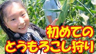 初めてのとうもろこし狩り【sana (10歳・小学5年生)】